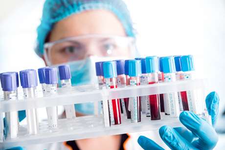 female doctor holding rack of blood samples