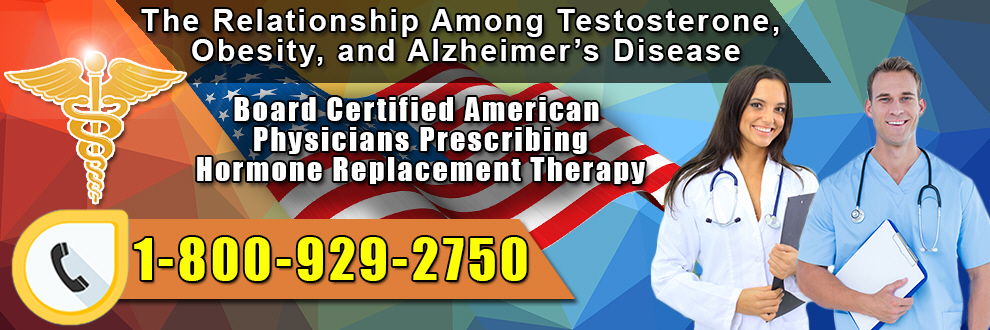 the relationship among testosterone obesity and alzheimers disease