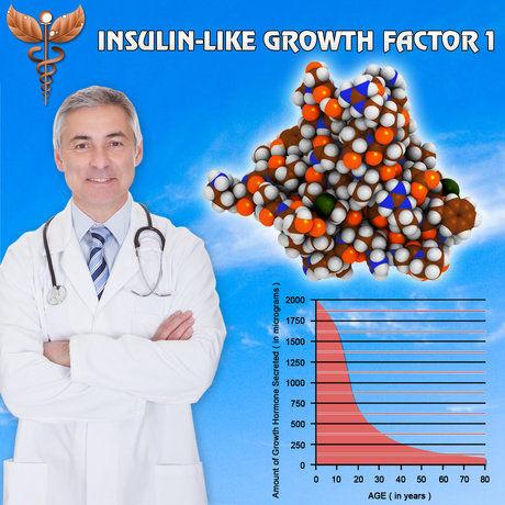 What Igf 1 Decline Is