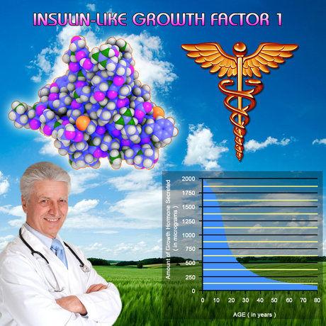 What Is Igf 1 Decline