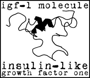 research igf 1 peptides