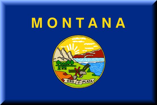 Montana state flag, medical clinics