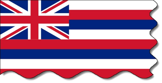 Hawaii state flag, medical clinics