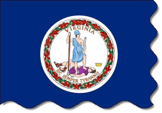 Virginia state flag, medical clinics