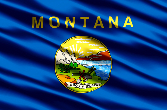 Montana state flag, medical clinics