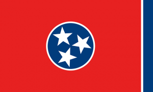 tennessee state flag sermorelin medical clinics 300x180