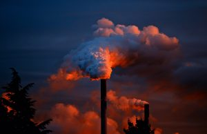 dioxins endocrine disruptor and persistent pollutant 300x194